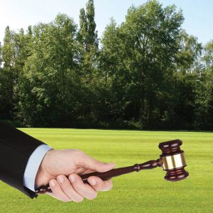 Estate Property Legal Rights