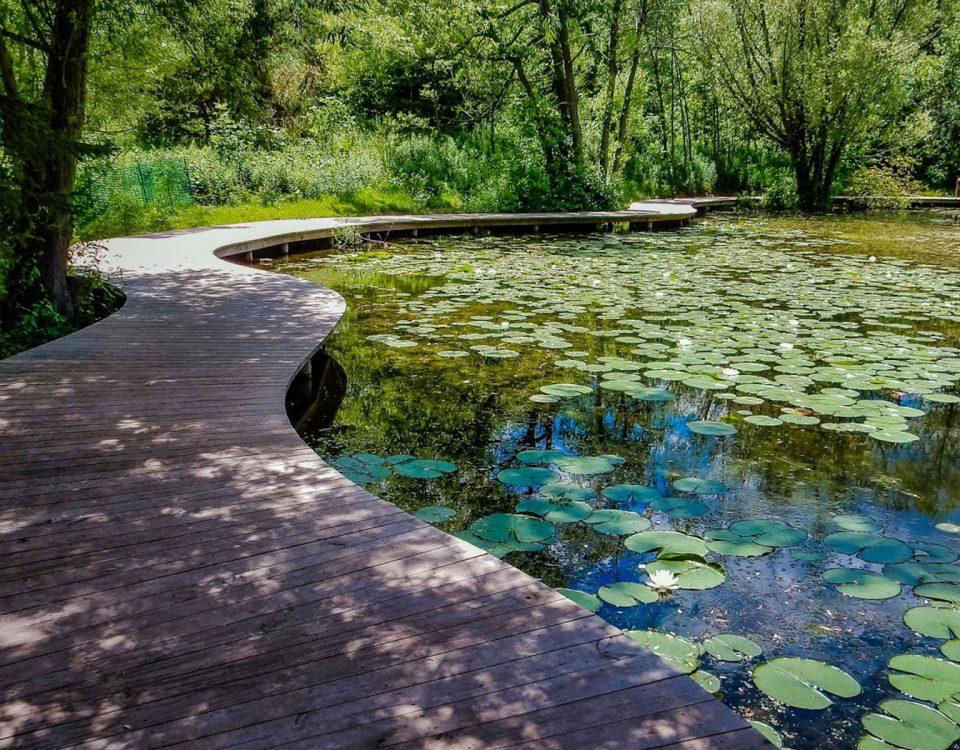 SCHLITZ AUDUBON RAISES $500K FOR STORMWATER MANAGEMENT OF NATURE CENTER'S WETLANDS, Sept 2018.